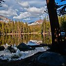 Yosemite Reflecting Pond by Cat Connor