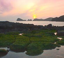 Chagwido, Jeju Island, Korea by Belle  Nachmann