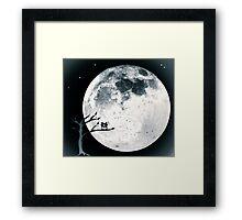Lone Owl Framed Print