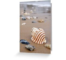 Summer sands Greeting Card