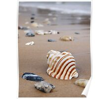 Summer sands Poster