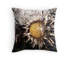 Dry Sunflower Throw Pillow