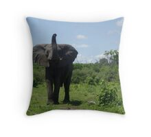 Zambia Throw Pillow