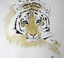 Tiger sketch by Paul Fearn