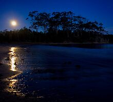 By the light of the silvery moon by Chris Brunton