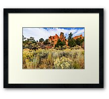 Red Canyon Area Utah Framed Print