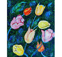 Tulips a bit in Van Gogh style Photographic Print