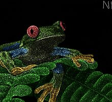Tree Frog (Colorized) by Nathan Jekich