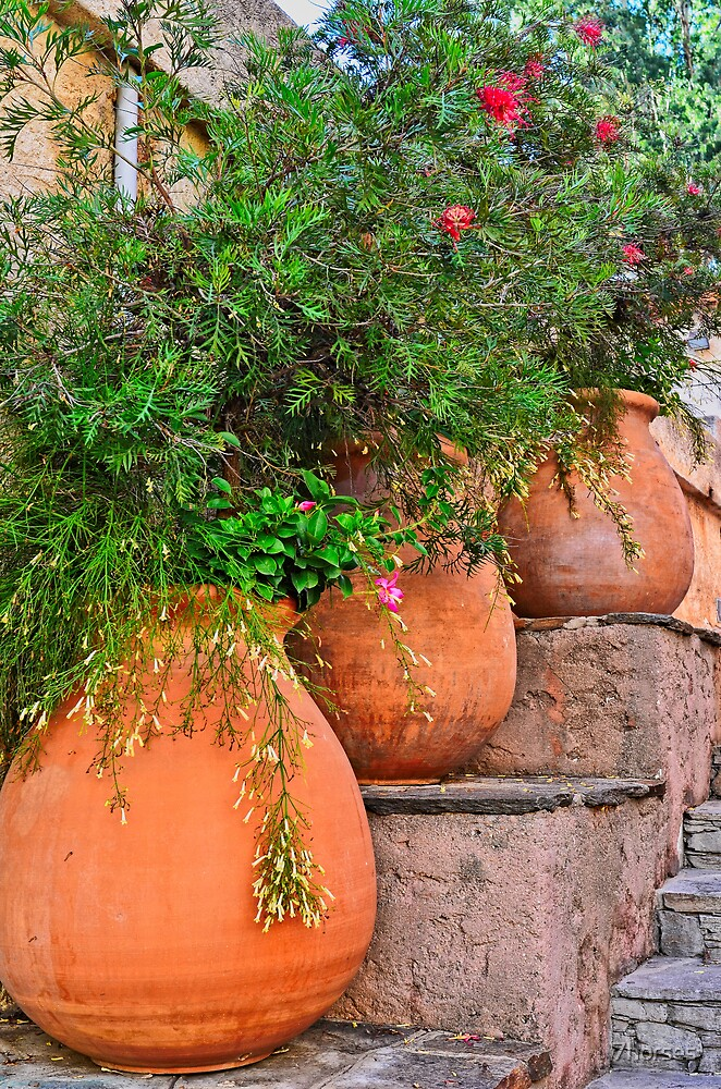Terracotta pots colors of the provence by 7horses