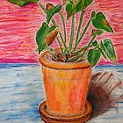 Green Plant on Pink and Blue - Still Life by ibadishi