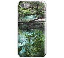 Fern Hammock Springs iPhone Case/Skin