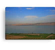 Landscape of the Kineret Canvas Print