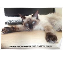 You Woke Me  Because You Want To Use The What? Poster