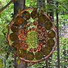 Forest Dream Catcher by Debbie  Maglothin