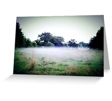 Misty dusk Greeting Card