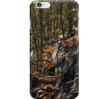 Along the Spine iPhone Case/Skin