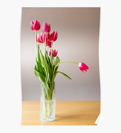 Tulips in a vase Poster