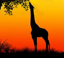 Safari Silhouette iPhone Case by x1xJAZZYx1x