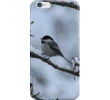 Chickadee In Snow iPhone Case/Skin