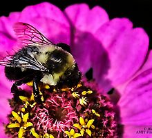 Worker Bee by heatherfriedman