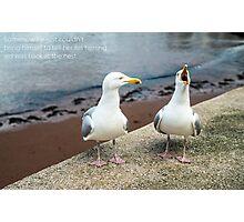 Two Herring Gulls Chatting Photographic Print