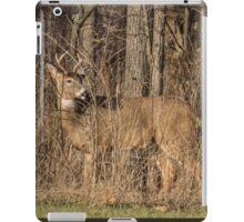 Deer Buck On Alert iPad Case/Skin