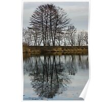 Of Mirrors and Trees Poster