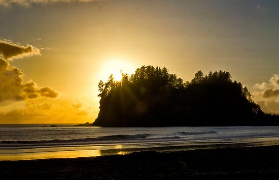 Pacific Sunset by Kathy Weaver