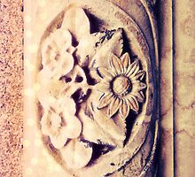 Wallflower, Wallflower by emiliewho