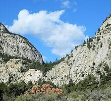 Colorado Sky by Kathleen Brant