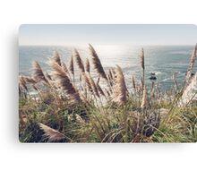 Reed, Wind & Ocean Canvas Print