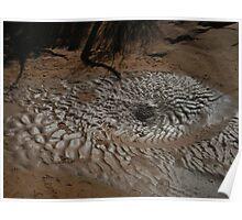 Mud Puddle Ripple Poster