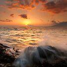 Splash of Paradise by DawsonImages