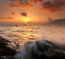Splash of Paradise by DawsonImages