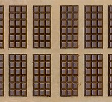 Twelve Chocolate Bars by visualspectrum