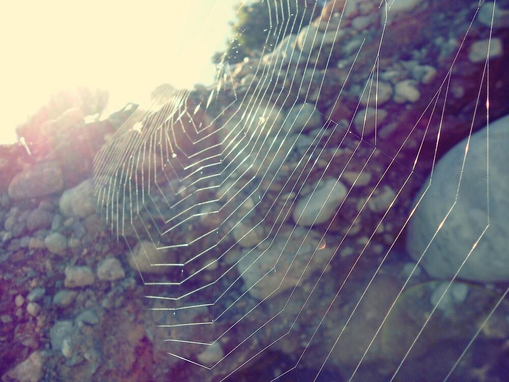 Web by craziwolf