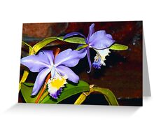Pond orchids Greeting Card