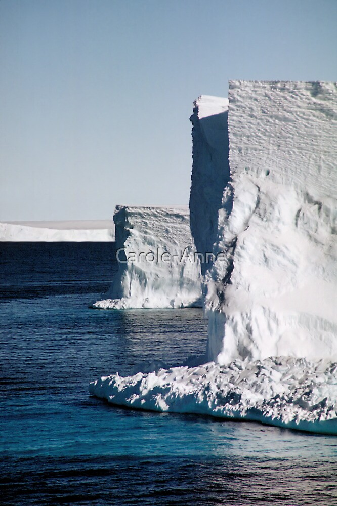 Drygalski Ice Tonque, Antarctica by Carole-Anne