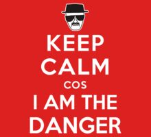 Keep Calm cos I am The Danger by powerlee