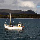 Carnarvon Bay Tasmania by Timothy John Keegan