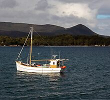Carnarvon Bay Tasmania by Timothy John Keegan