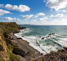 Cornwall Coast by Mattia  Bicchi Photography