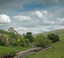 Yorkshire hamlet by Judi Lion