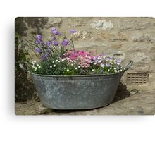 Flowers in a tub Canvas Print