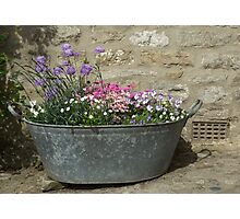 Flowers in a tub Photographic Print