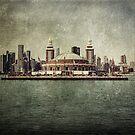 Navy Pier by Andrew Paranavitana