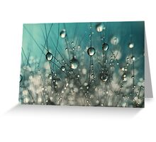 Crazy Cactus Sparkles Greeting Card
