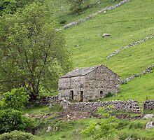 Yorkshire barn by Judi Lion
