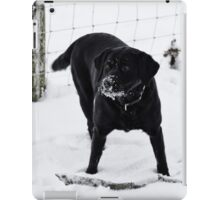 Black labrador iPad Case/Skin
