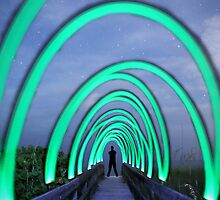 Starry Archway by Michael Damanski
